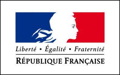 Site officiel  du Ministère des Affaires sociales et de la Santé