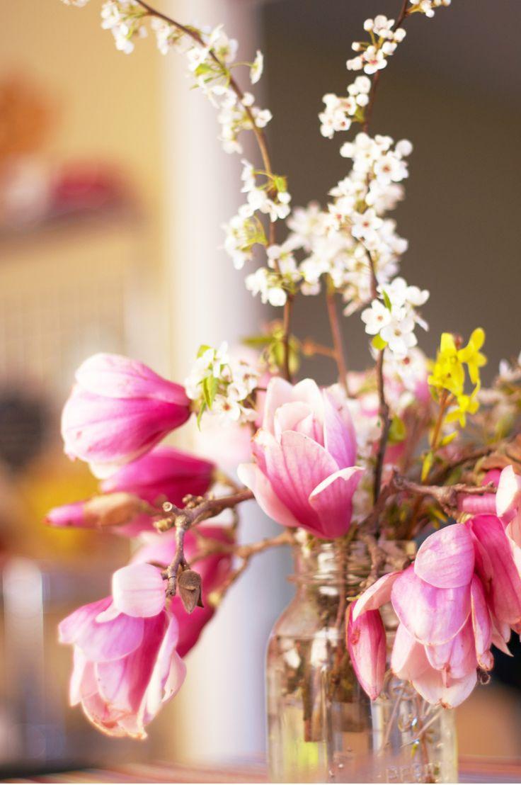 Japenese magnolia, cherry blossom, and forsythia