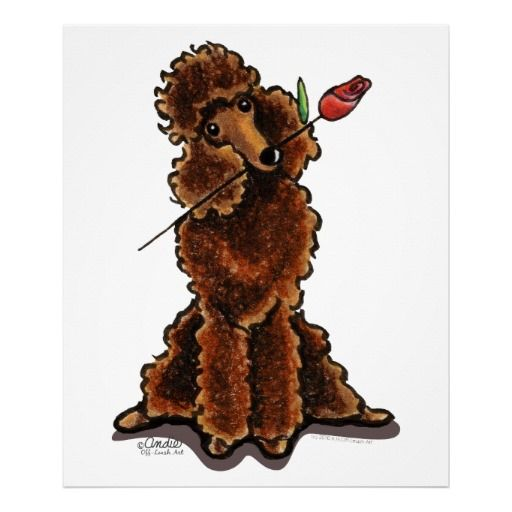 Sweet Chocolate Poodle Off-Leash Art™ Print