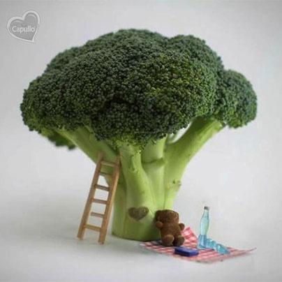 *El brócoli forma parte de la familia del repollo.    *Contiene selenio, un mineral que actúa contra el cáncer y es un antiviral.    *Una taza de brócoli proporciona alrededor de 75 mg de calcio y unos 1,2 mg de hierro.    *Tiene el doble de vitamina C que una naranja.    Y lo más curioso es que para eliminar el olor del brócoli sólo hay agregar una rebanada de pan a la olla de cocimiento.  #Nutrición y #Salud YG > nutricionysaludyg.com