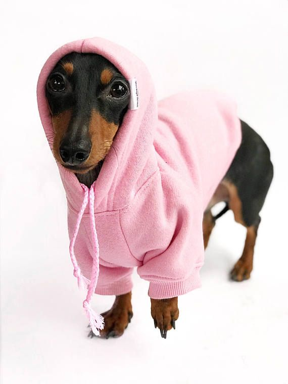 Plain Dog Hoodie Dog Clothes Pink Dog Sweatshirt Dog