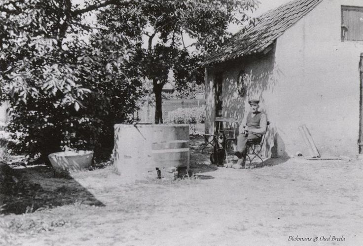 Koninginnestraat. Piet de Grauw met z'n half erfje achter in z'n hof, naast hem z'n hond Bello. Hij was vanuit de stad (binnen de singels) naar buiten getrokken om daar z'n boerderij te beginnen. Zijn boerderij bestond uit een woonhuis en een stal. Hij had 1 paard en ca. 9 koeien. De melk en eieren werden in de stad verkocht. Z'n akker strekte zich van de Koninginnestraat uit tot aan het Rozenplein (nu Hyacintplein); Klimopstraat tot aan de Wethouder Romboutsstraat. Hij deed aan tuinbouw…