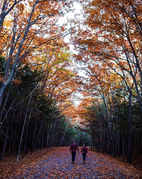 In fall, every path becomes the scenic route. (Photo via Instagram: gpowersfilm) L.L.Bean Scotch Plaid Flannel Shirts for men and women.