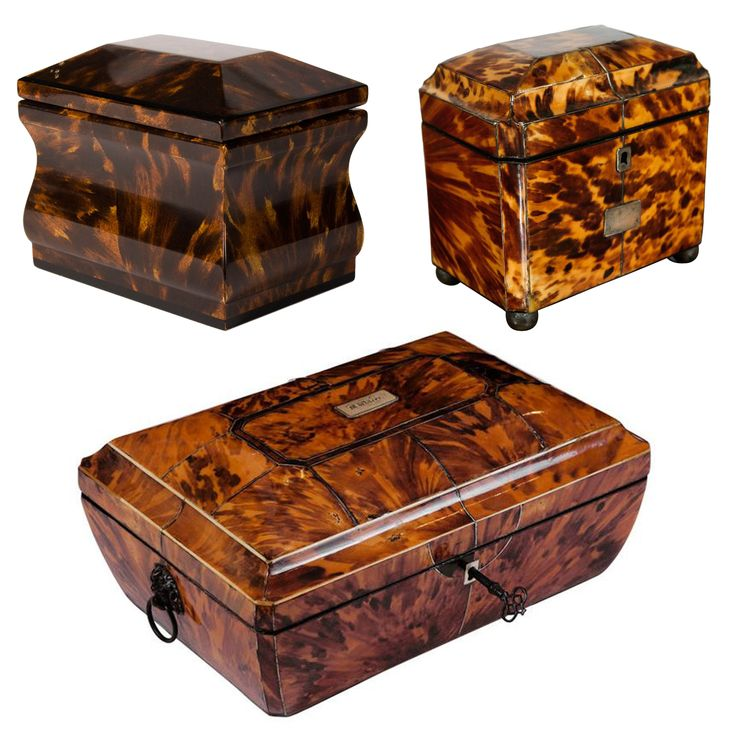 kathryn crisp greeley north carolina interior designer and author of the collected tabletop presents tortoise shell antique boxes