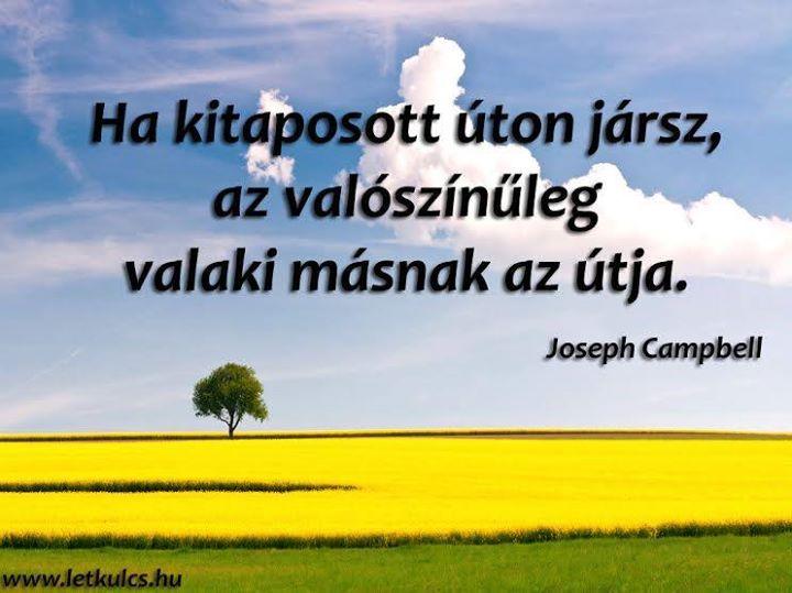 Joseph Campbell gondolata a kockázatvállalásról. A kép forrása: A Létezés Kulcsa # Facebook