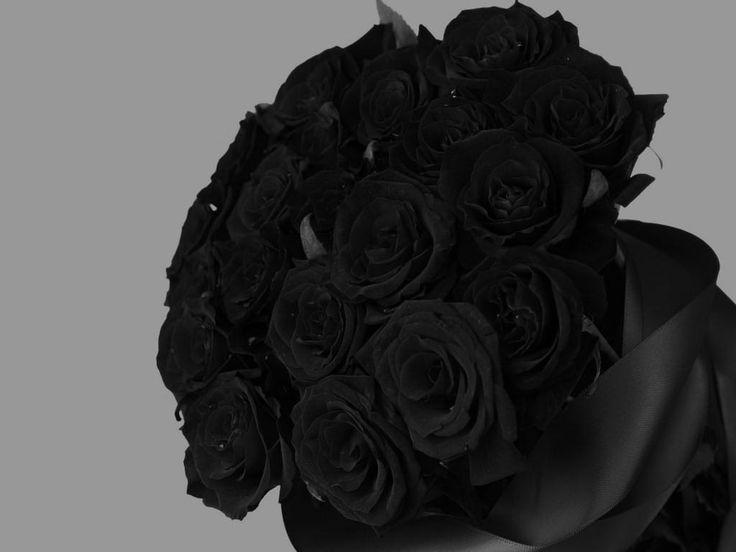En este lugar del mundo se dice que sí existen las únicas rosas negras de Turquía, aunque parezca increíble, estas hermosas flores sí existen y aquí las puedes encontrar