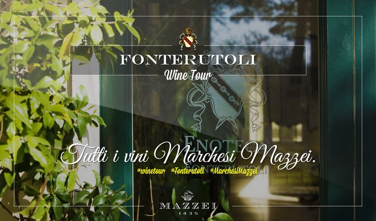 All of Marchesi Mazzei's wines. For reservations for large groups contact our Enoteca at enoteca@fonterutoli.it @marchesimazzei #winetour #MarchesiMazzei #Fonteurutoli