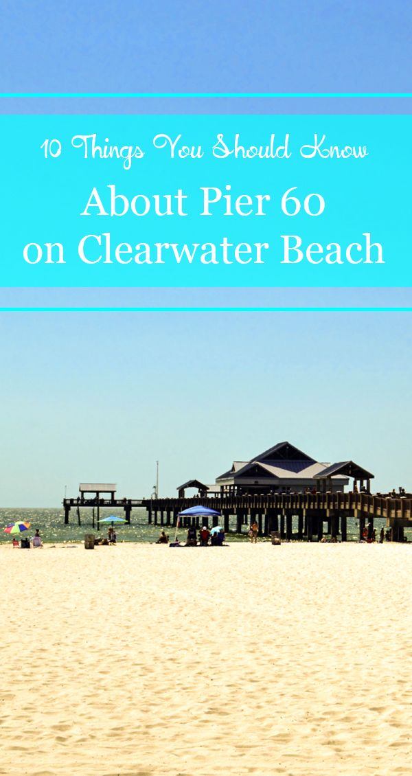 Pier 60 located right on Clearwater Beach is one of those places that you must see during your gulf beach vacation. There's so much to see and do there, and a lot of it is absolutely free.