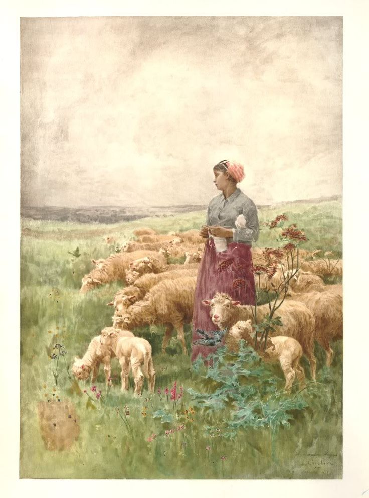Mary And John Remodel Their 1980s Kitchen With A Fresh: 4145 Best Images About Sheep On Pinterest