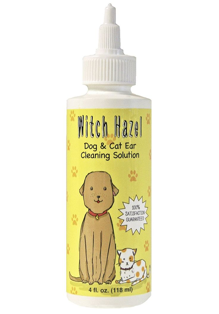 Cleaning Cat S Ears With Witch Hazel