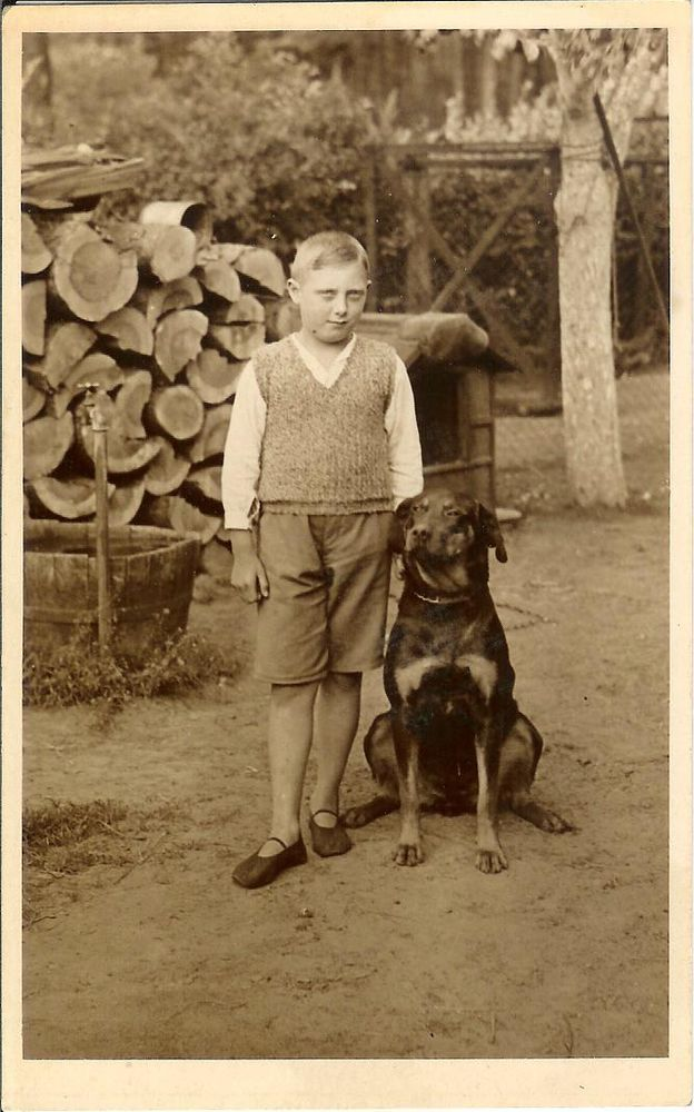 Boy w BEAUCERON or rottweiler type DOG wood logs RPPC real photo postcard
