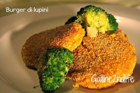 Galline 2ndlife: Curare la pazienza