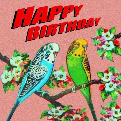 Budgies Birthday Card By SugarushUK/Sugarushuk. This Image