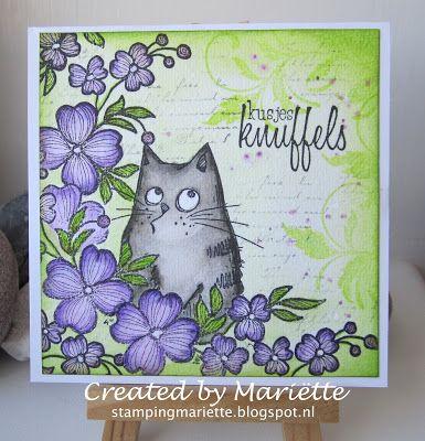 http://stampingmariette.blogspot.nl/2016/05/knuffels-van-de-kat.html
