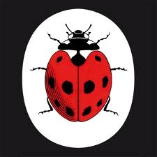 ladybird me books