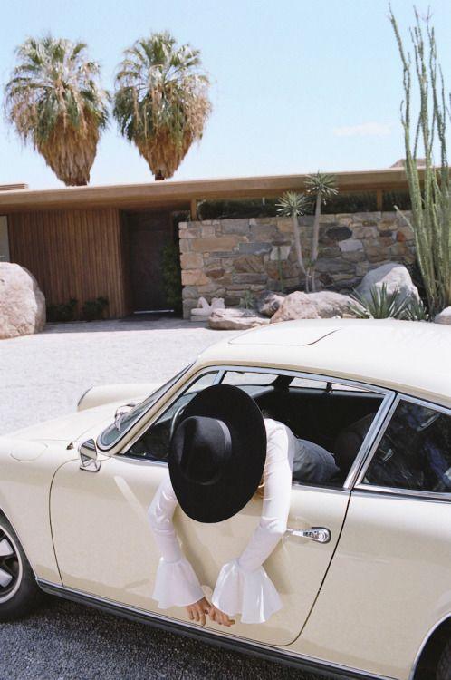 desert + palms