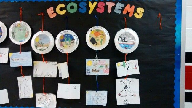 a science paper on freshwater ecosystems Kids learn about the science of the phases a science paper on freshwater ecosystems of the moon follow link to site about plants.