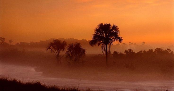 Vista da savana ao entardecer no Parque Nacional das Emas, em Goi�s. O local, patrim�nio da humanidade pela Unesco, abriga um dos ecossistemas mais antigos e com enorme biodiversidade