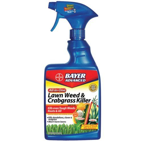 Bayer Advanced 704125A All-In-One Lawn Weed and Crabgrass Killer Ready-to-Use, 24-Ounces by Bayer Advanced. $9.36. Lawn can be mowed one to two days after spraying. Not for use on st. augustine grass including floratam variety, , carpet grass, centipede grass or dichondra. Kills lawn weeds plus crabgrass without harming the lawn (when used as directed, not for use on st. augustinegrass including floratam variety, bahiagrass, carpetgrass, centipedegrass or dichondra). Plus...
