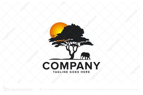 Logo for sale: Africa Tree  Logo