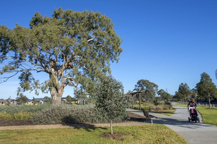 Mernda display village
