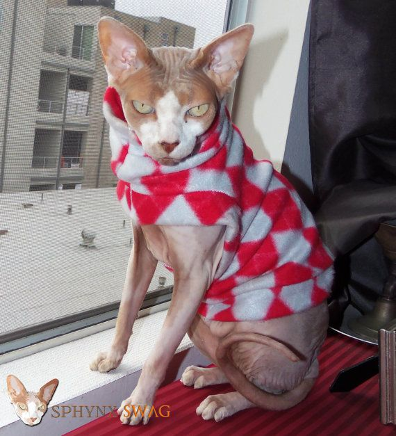 Sphynx Designer Clothing Back To School Fleece Cat by SphynxSwag