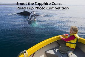 Sapphire Coast Tourism Facebook Photo Competition