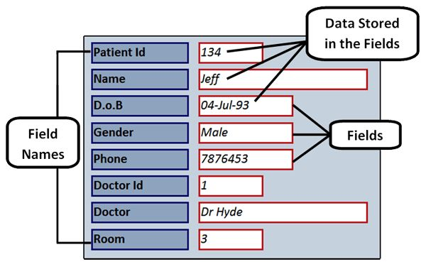 IGCSE ICT - Database Structures