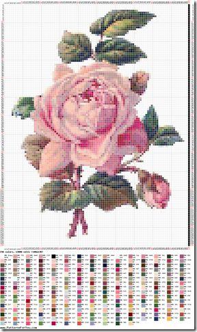 graficos gratis rosas ponto cruz