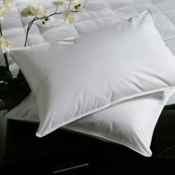 White Plush-top Medium-density Goose Feather Pillows (Set of 2) | Overstock.com Shopping - Great Deals on Down Pillows