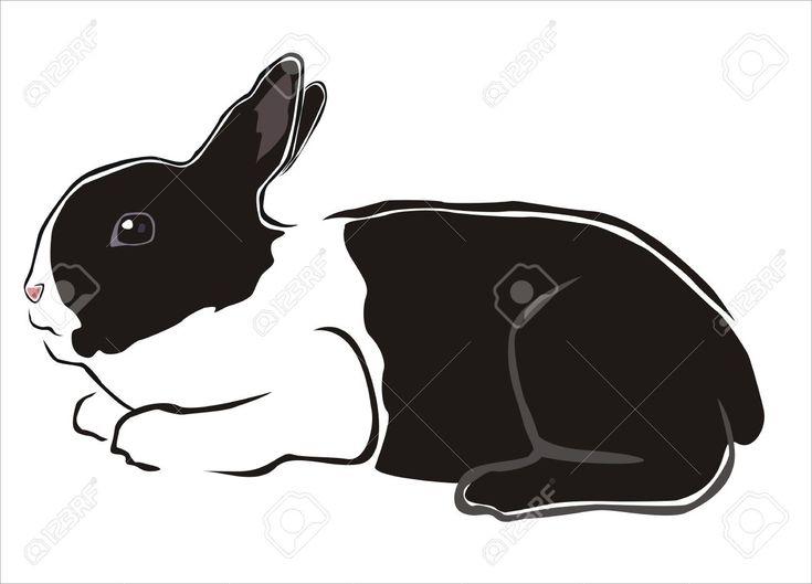 Disegno Di Un Coniglio Bianco E Nero Clipart Royalty-free, Vettori ...