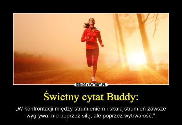 """Świetny cytat Buddy: – """"W konfrontacji między strumieniem i skałą strumień zawsze wygrywa; nie poprzez siłę, ale poprzez wytrwałość."""""""