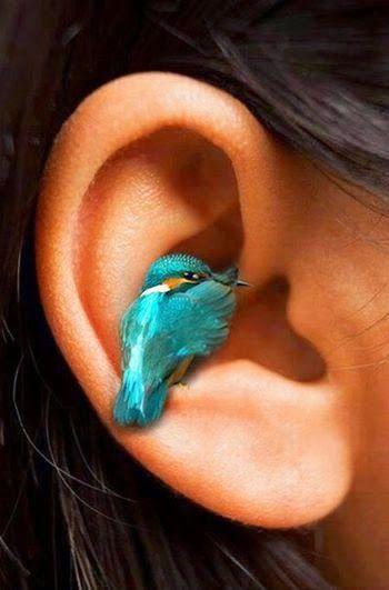 """Outras Formas de Expressão- """" passarinho sussurrou baixinho em meu ouvido segredos de arco-íris"""""""
