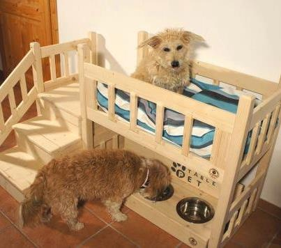Pet Bunk Bed/Feeder | Woodworking Bed Plans | Pinterest | Pets, Bowls ...