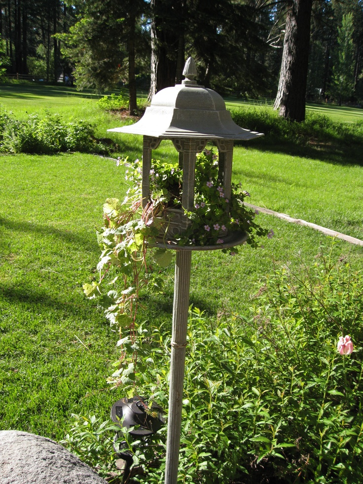 Turn a Victorian Bird Feeder into a planter with flowers and trailing plants (didn't work as a feeder, filled up with water everytime the sprinklers came on).