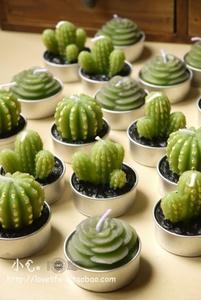 $2.5 artificial cactus from zzkko.com