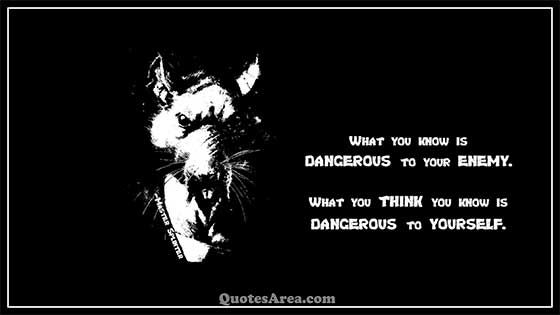 What you know is DANGEROUS to your ENEMY. What you THINK you know is DANGEROUS to YOURSELF. ~Master Splinter #quote