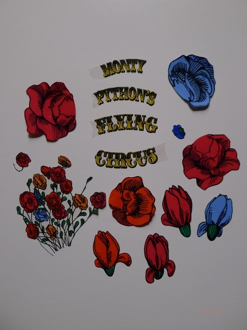 Monty Python's Flying Circus...some of these flowers will be on my right shoulder someday soon :)