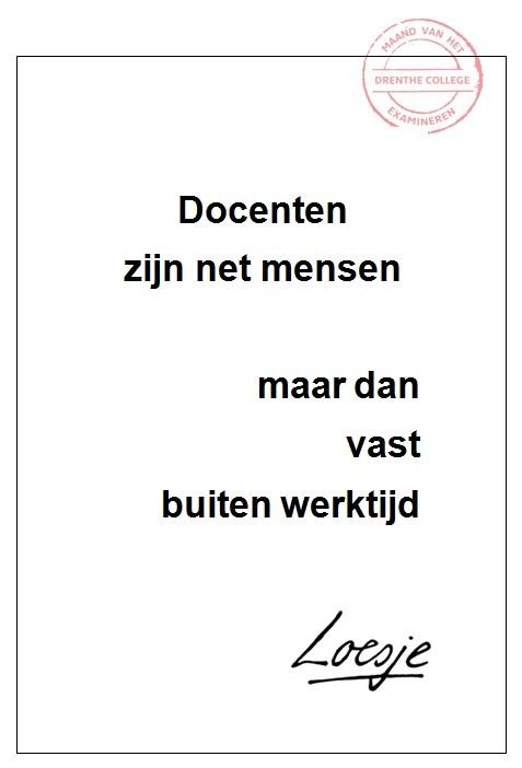 Docenten zijn net mensen - Marion Beukers - Drenthe College