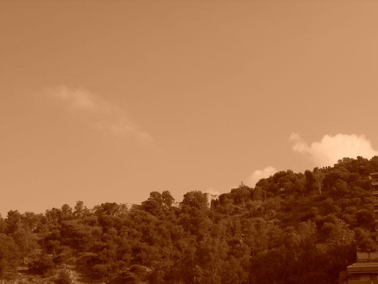 Torre de la Corcha desde el parque