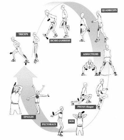 Comme promis, voilà quelques exemples d'échauffements qu'il fait impérativement pratiquer avant de se lancer dans les exercices eux-mêmes.