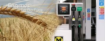 Enzymatic Biodiesel process framework, unique alternate glycerine structures and furthermore glycerine cleaning frameworks. On the off risk that you require charging associssation, compassionately do not falter to get in contact with us at anything time.