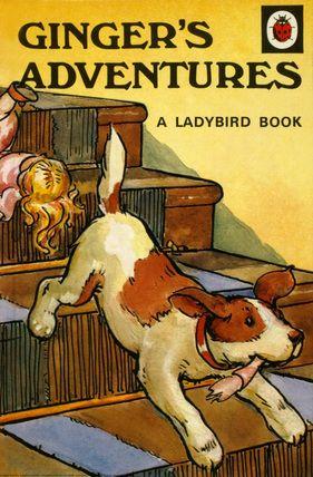 Ginger's Adventures ladybird book