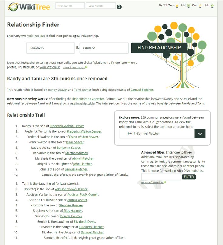 Wiki Tree makes finding relationships with DNA Matches easier