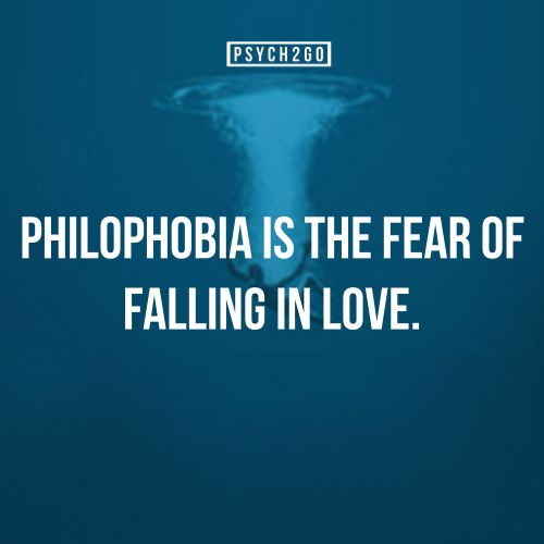 Afraid To Fall In Love Quotes. QuotesGram