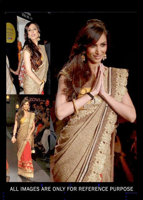 Malaika Arora in Net Designer Saree