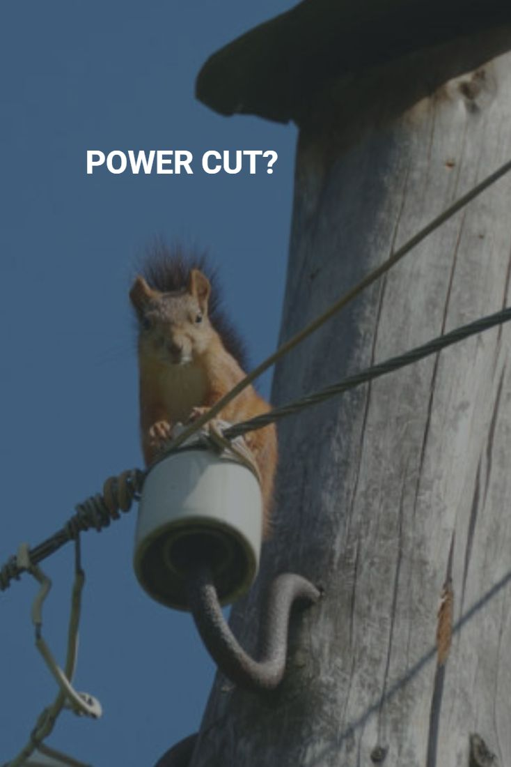 One small squirrel caused huge #poweroutage in #SanDiego. The #blackout left 45,000 customers without electricity. Do you think that #powercut will never happen to you? Nobody that be sure. If you have something to loose due to #powercuts then use #iSocket for #poweroutages alerts to your mobile phone. For the UK you can use GSM plug iSocket PowerWatch, for United States you can use #iSocket3G - see more at…