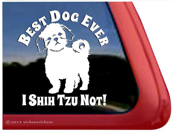"""Best Dog Ever I Shih Tzu Not - DC651SP2 - High Quality Adhesive Vinyl Window Decal Sticker - 5"""" tall x 5"""" wide on Etsy, $7.29"""