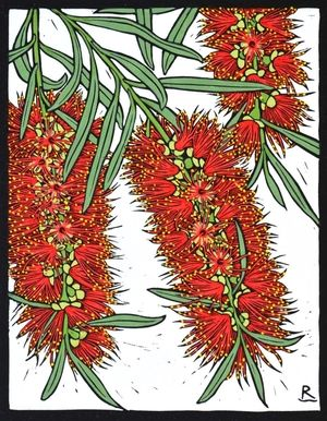 BOTTLE BRUSH 28 X 22 CM    EDITION OF 50 HAND COLOURED LINOCUT ON HANDMADE JAPANESE PAPER $500