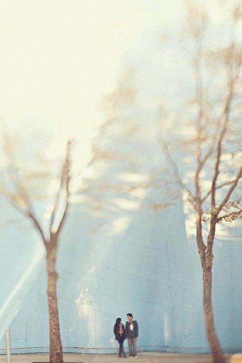 Romantic Photography, Couples, Romances, Wedding, Engagement, Park, Trees